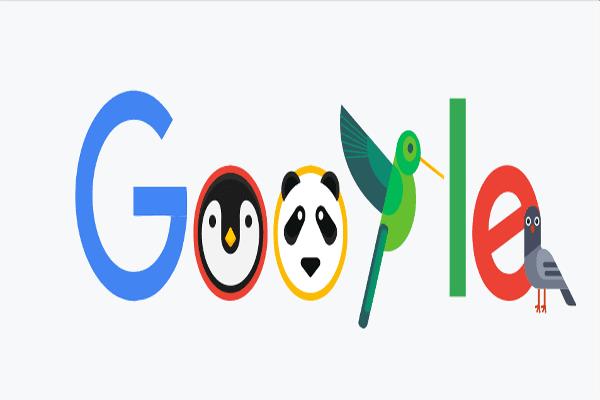 باغ وحش الگوریتم های محبوب ترین موتور جستجو