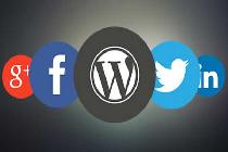 بهبود سئو سایت وردپرس با پلاگین شبکه های اجتماعی